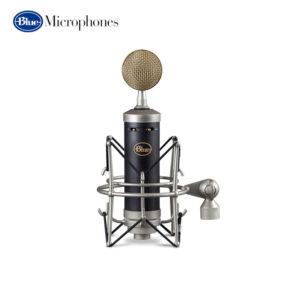 Blue Microphones Baby Bottle SL Large Diaphragm Studio Condenser Microphone Condenser Microphone IMG
