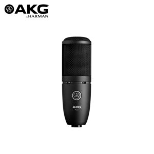 AKG P120 High Performance General Purpose Recording Microphone Condenser Microphone IMG